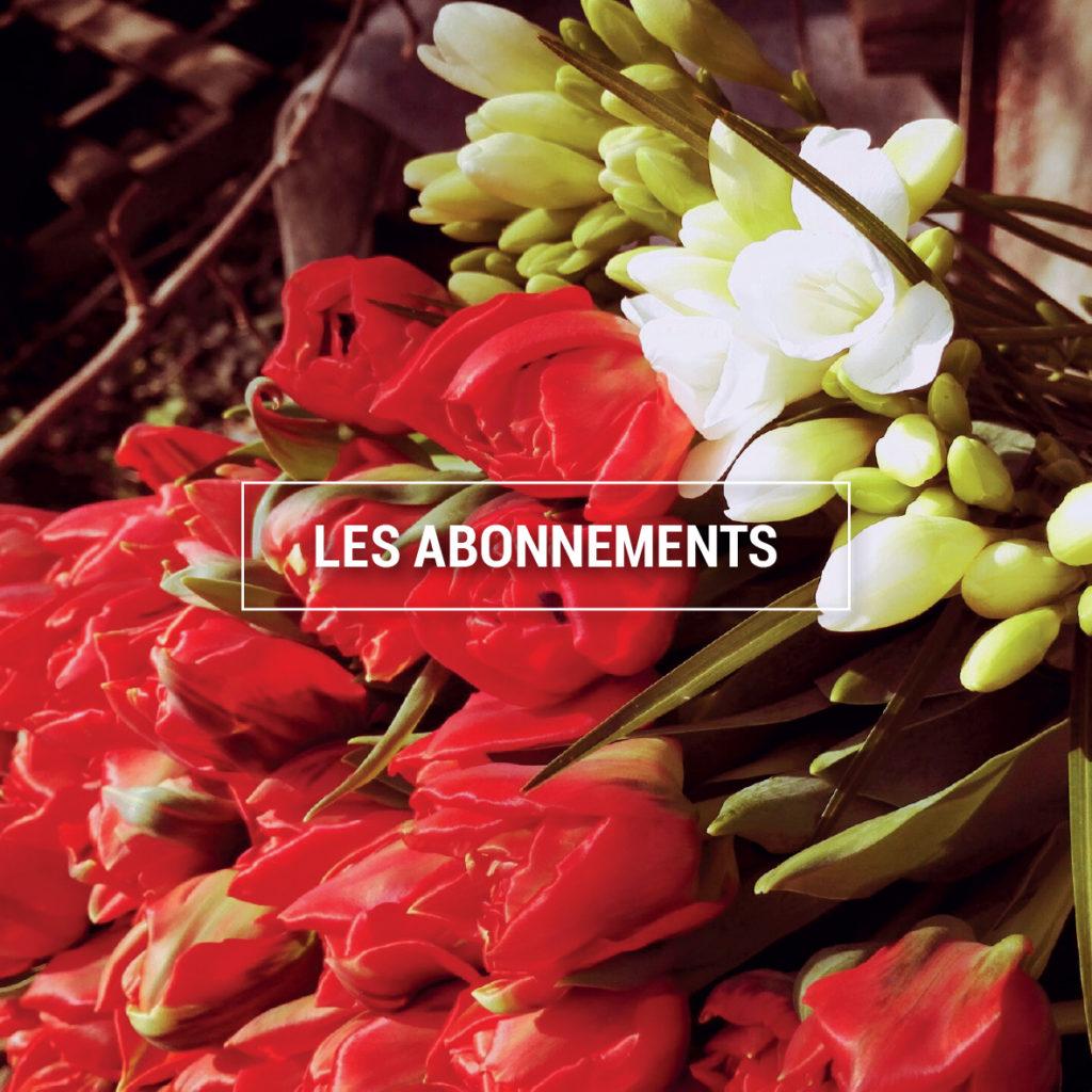 Photo de fleurs : une botte de tulipes rouges et de freesias blancs.