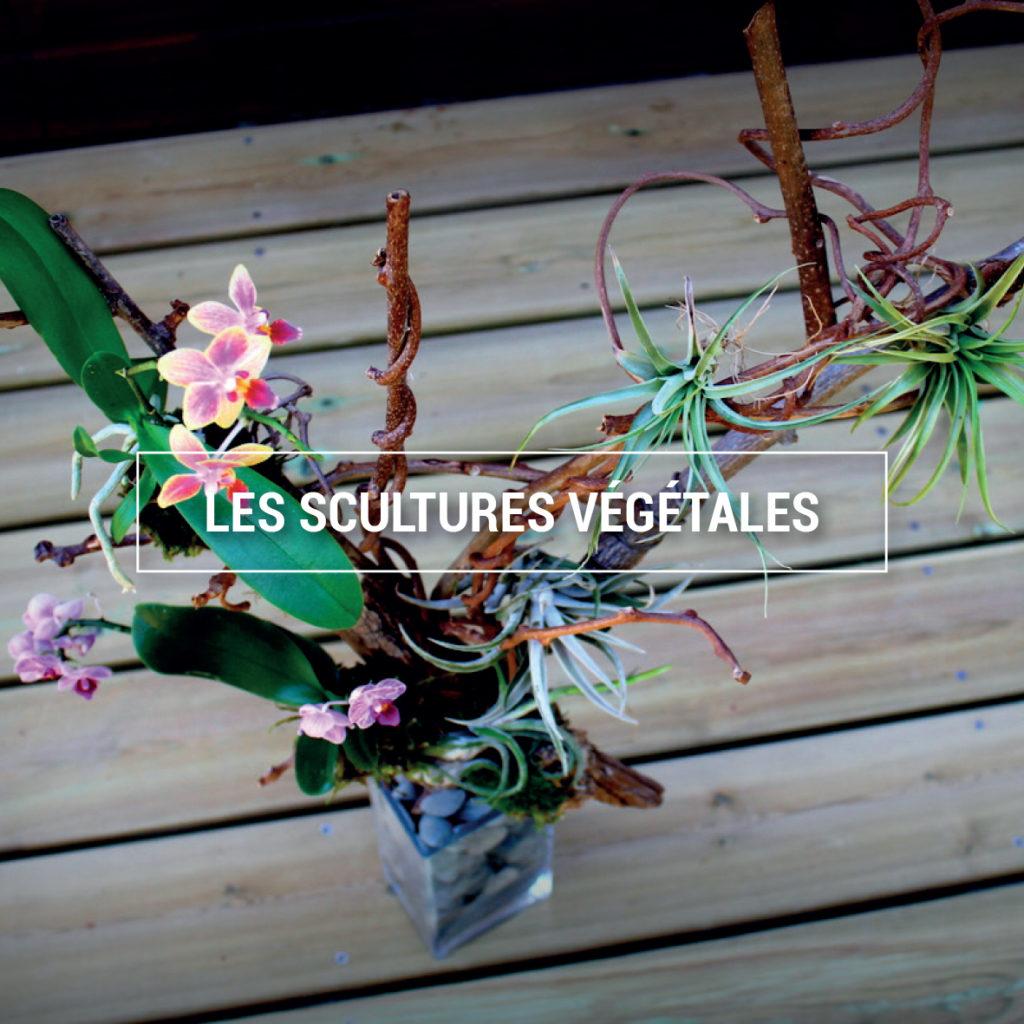 Photo d'une sculpture végétale réalisé par L'adresse florale